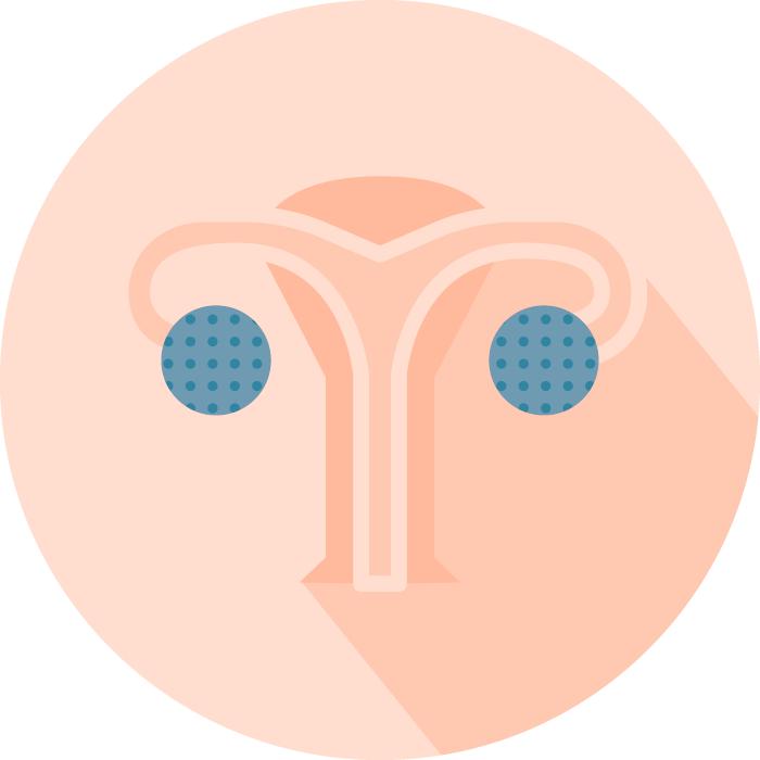 EMMA Endometrial Microbiome Metagenomic